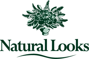 Natural looks Logo Vector
