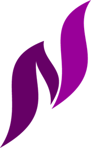 N S Letter Logo Vector Ai Free Download
