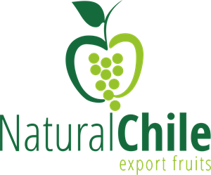 Natural Chile Export Fruits Logo Vector