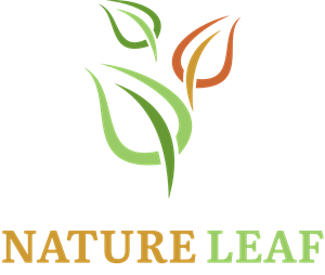 Nature Leaf Logo Vector
