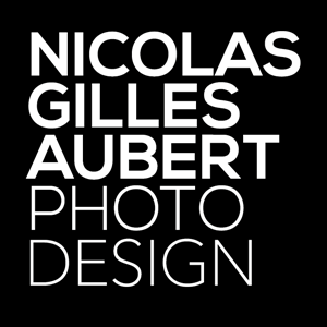 Nicolas Gilles Aubert Photos Design Logo Vector