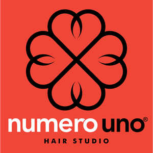 Numero Uno Hair Studio Logo Vector