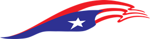 Puerto Rico Flag for Truck and car Logo Vector