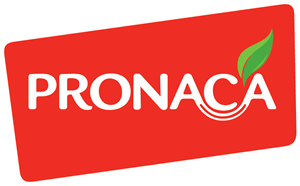 Pronaca Logo Vector