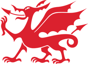 Red dragon Logo Vector