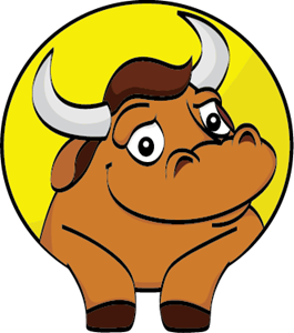 ROADBULL Logo Vector