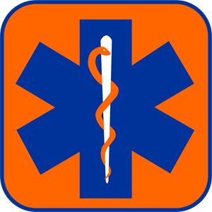 Star Of Life Orange Logo Vector