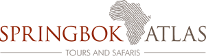 Springbok Atlas Tours and Safaris Logo Vector