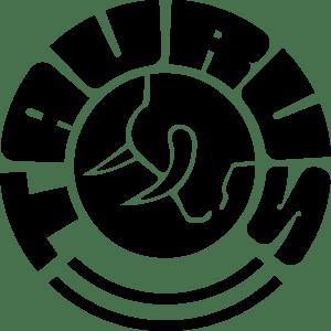 Image result for taurus logo