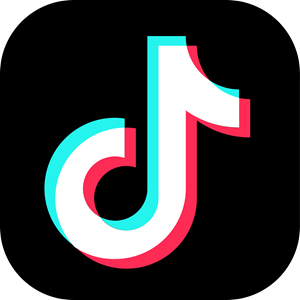 TikTok App Icon Logo Vector