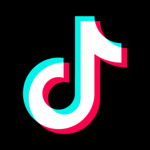 tiktok icon Logo Vector