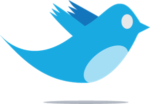 Twitter bird Logo Vector