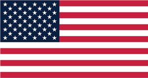 USA Flag Logo Vector