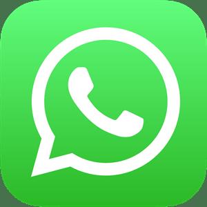 Resultado de imagem para logo do whatsapp vetor