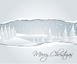 white christmas background Logo Vector