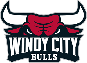 WINDY CITY BULLS Logo Vector