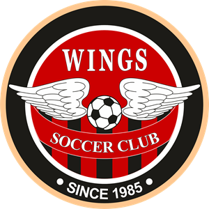 Wings Soccer Club Logo Vector