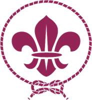 World scout movement Logo Vector