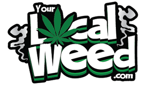 Your Local Weed Logo Vector
